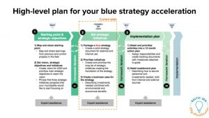 High-level plan for your blue strategy accelerator
